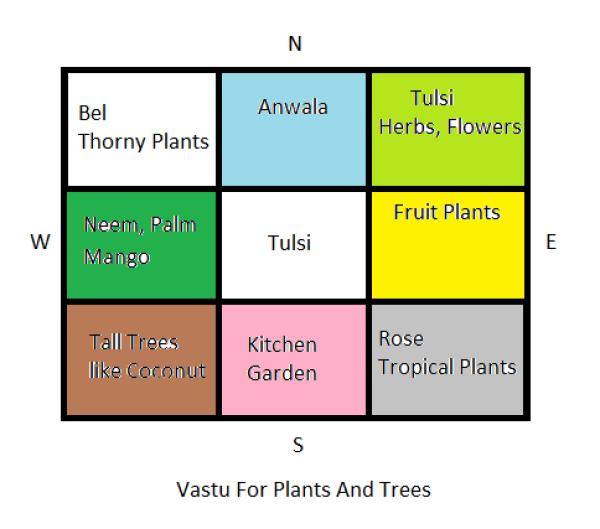 east facing plants, east facing plants tips,